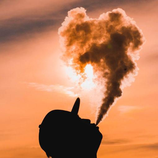 Cannabis Industry News Enchantibis